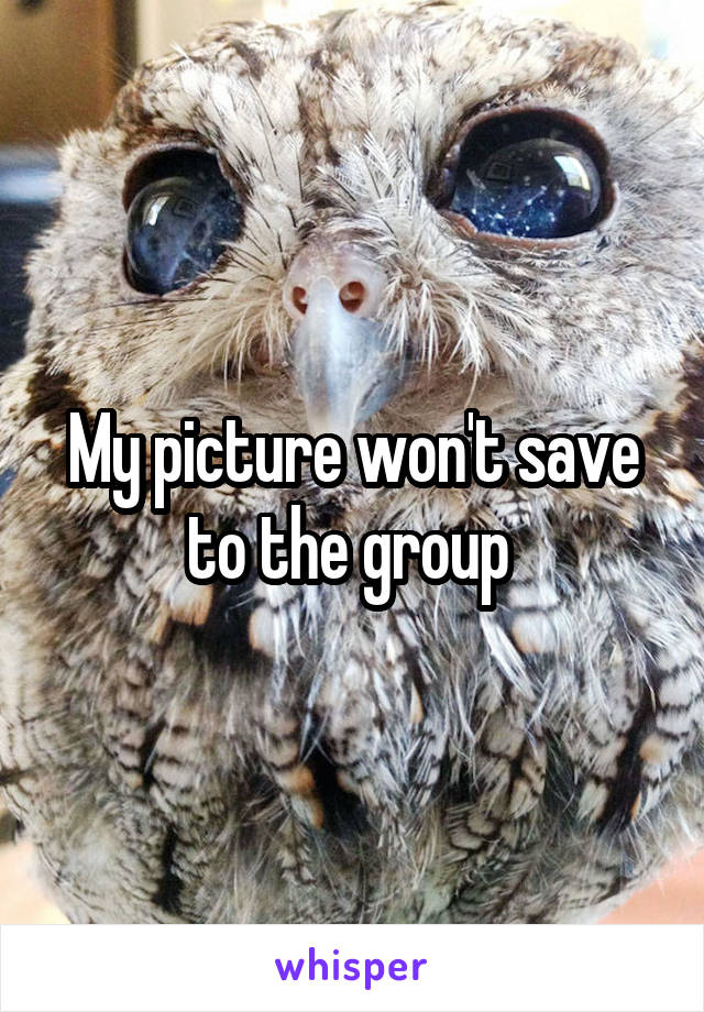 My picture won't save to the group