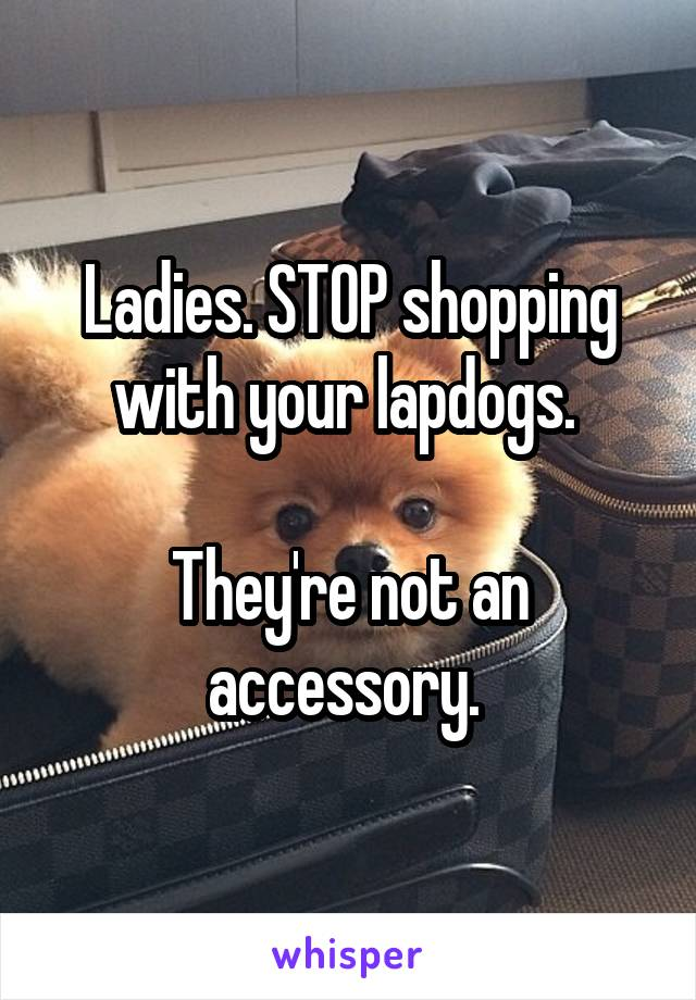 Ladies. STOP shopping with your lapdogs.   They're not an accessory.