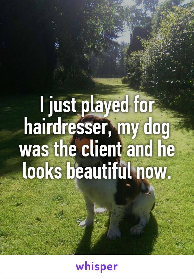 I just played for hairdresser, my dog was the client and he looks beautiful now.
