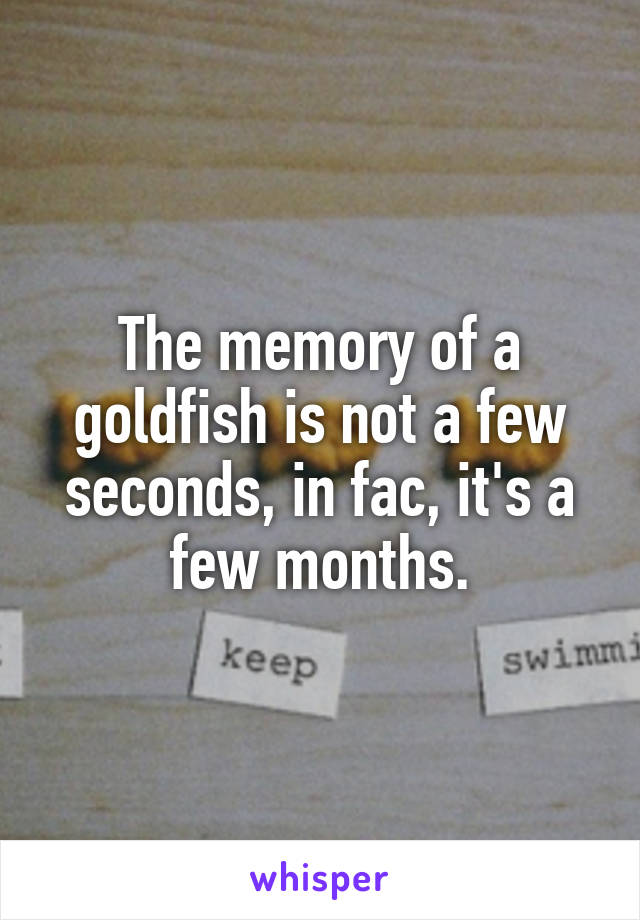 The memory of a goldfish is not a few seconds, in fac, it's a few months.