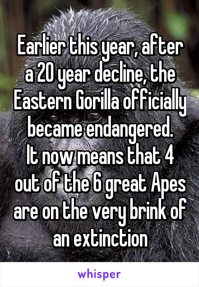 Earlier this year, after a 20 year decline, the Eastern Gorilla officially became endangered. It now means that 4 out of the 6 great Apes are on the very brink of an extinction