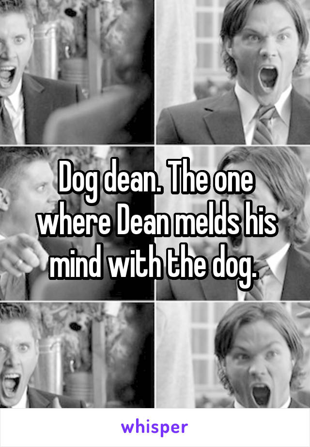 Dog dean. The one where Dean melds his mind with the dog.