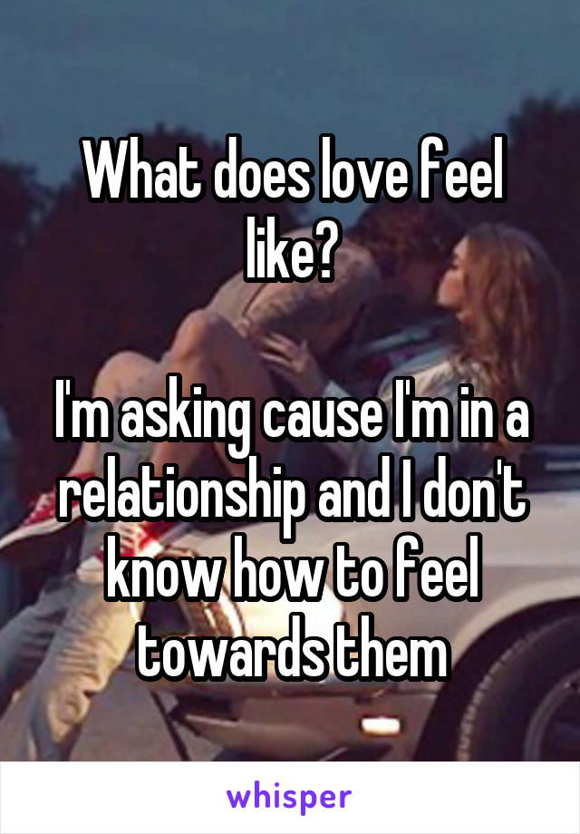 What does love feel like?  I'm asking cause I'm in a relationship and I don't know how to feel towards them