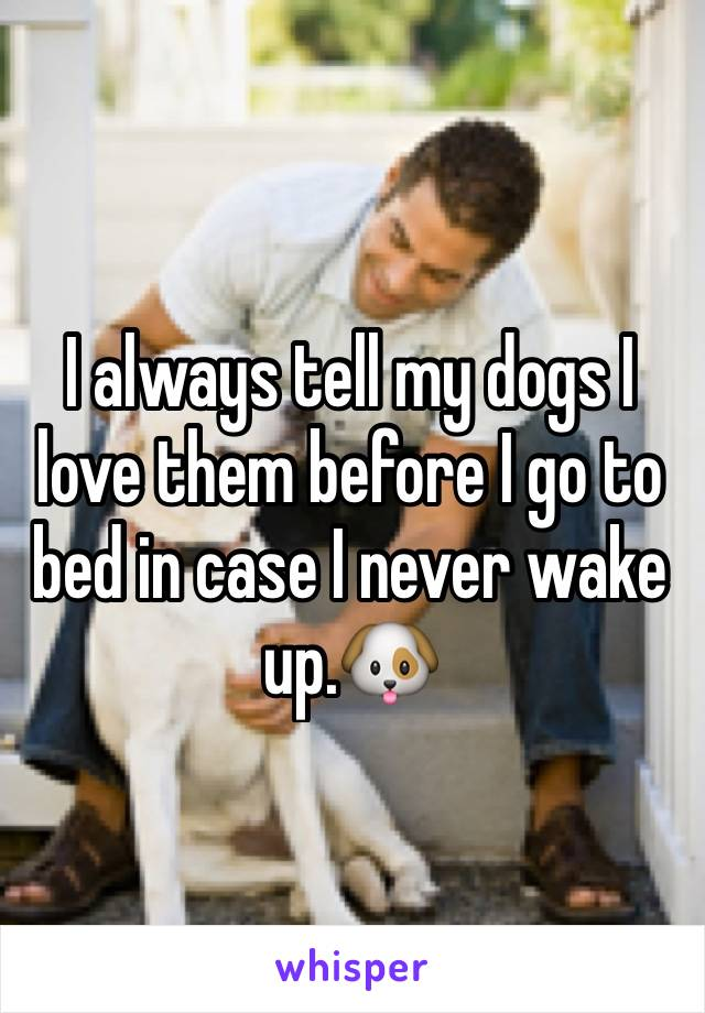 I always tell my dogs I love them before I go to bed in case I never wake up.🐶