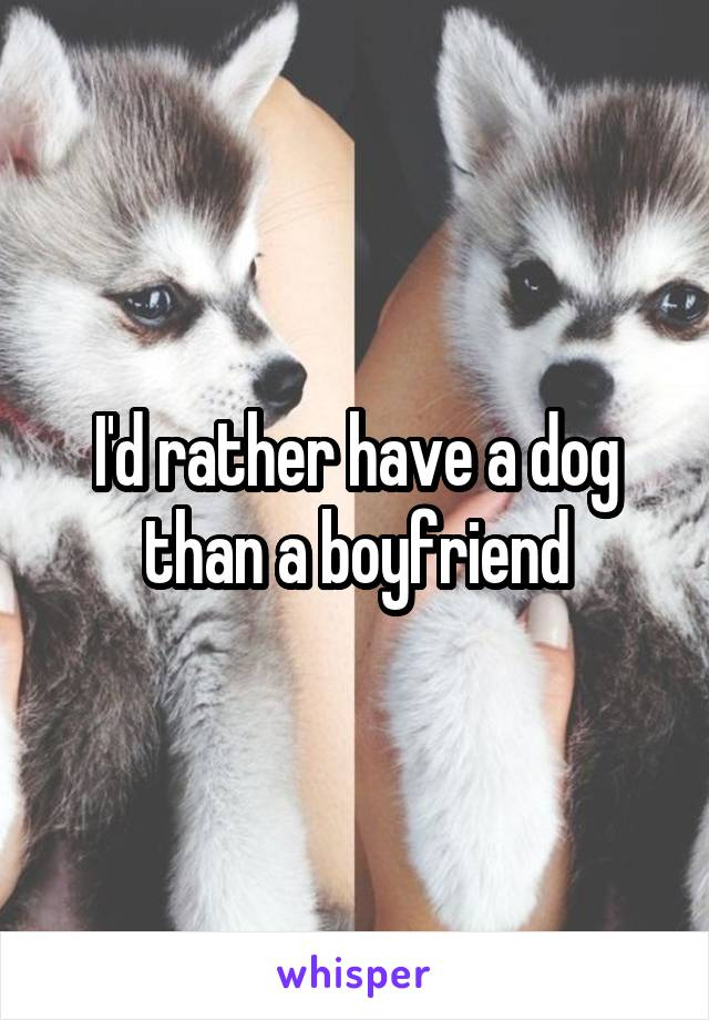 I'd rather have a dog than a boyfriend