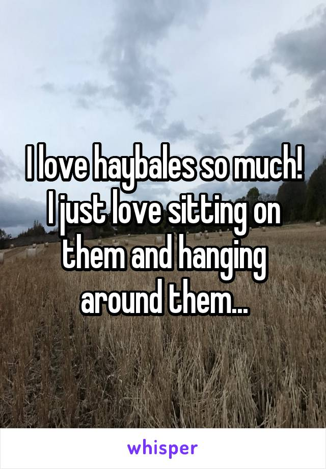 I love haybales so much! I just love sitting on them and hanging around them...