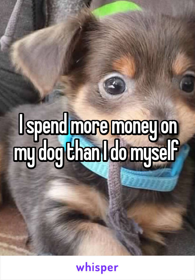 I spend more money on my dog than I do myself