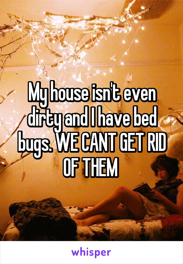 My house isn't even dirty and I have bed bugs. WE CANT GET RID OF THEM