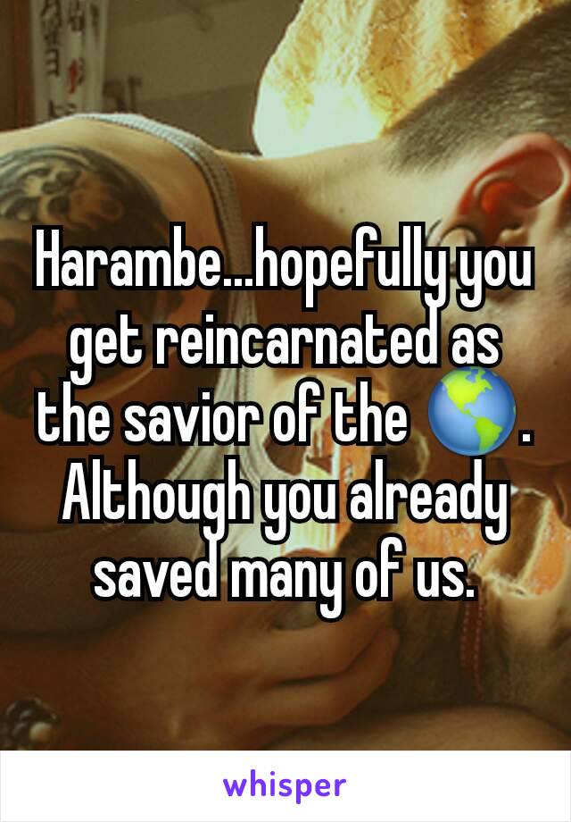 Harambe...hopefully you get reincarnated as the savior of the 🌎. Although you already saved many of us.