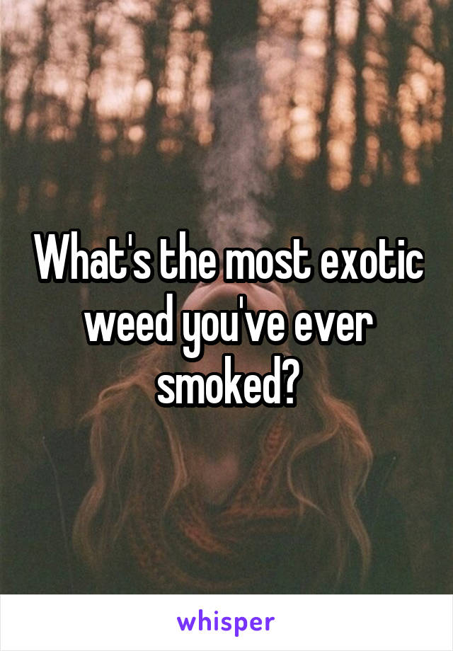 What's the most exotic weed you've ever smoked?