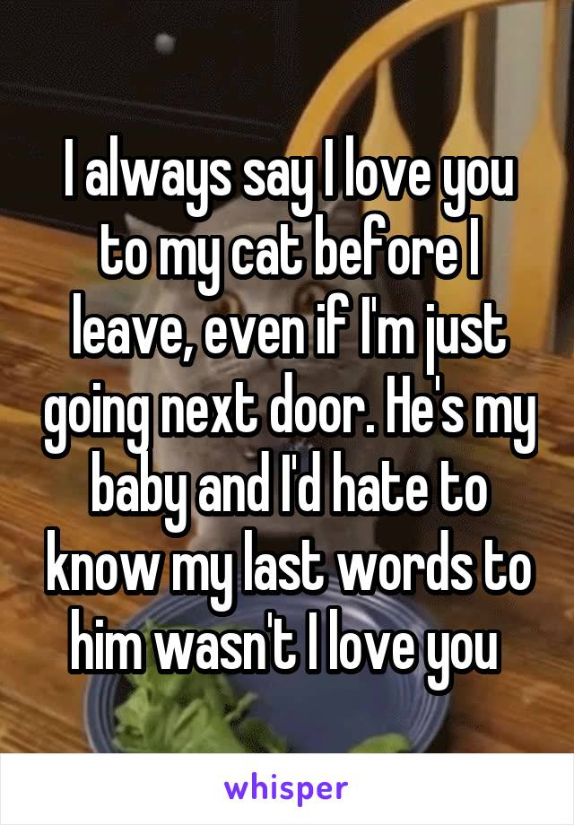 I always say I love you to my cat before I leave, even if I'm just going next door. He's my baby and I'd hate to know my last words to him wasn't I love you