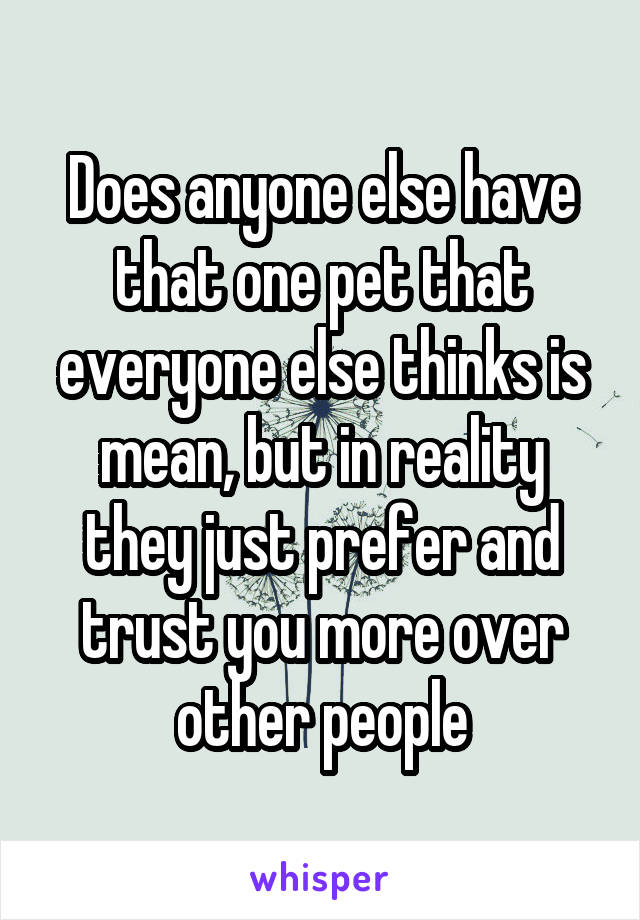 Does anyone else have that one pet that everyone else thinks is mean, but in reality they just prefer and trust you more over other people