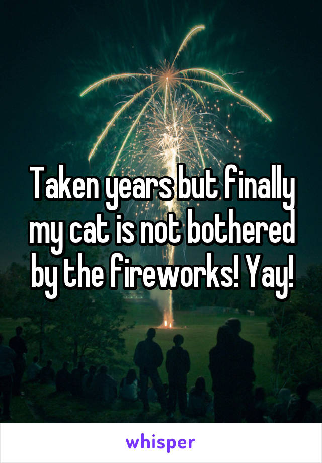 Taken years but finally my cat is not bothered by the fireworks! Yay!