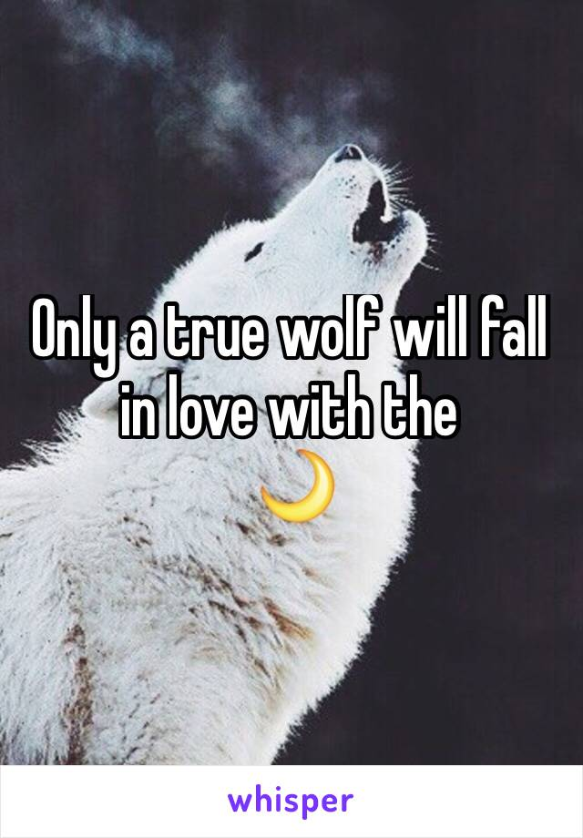 Only a true wolf will fall in love with the  🌙
