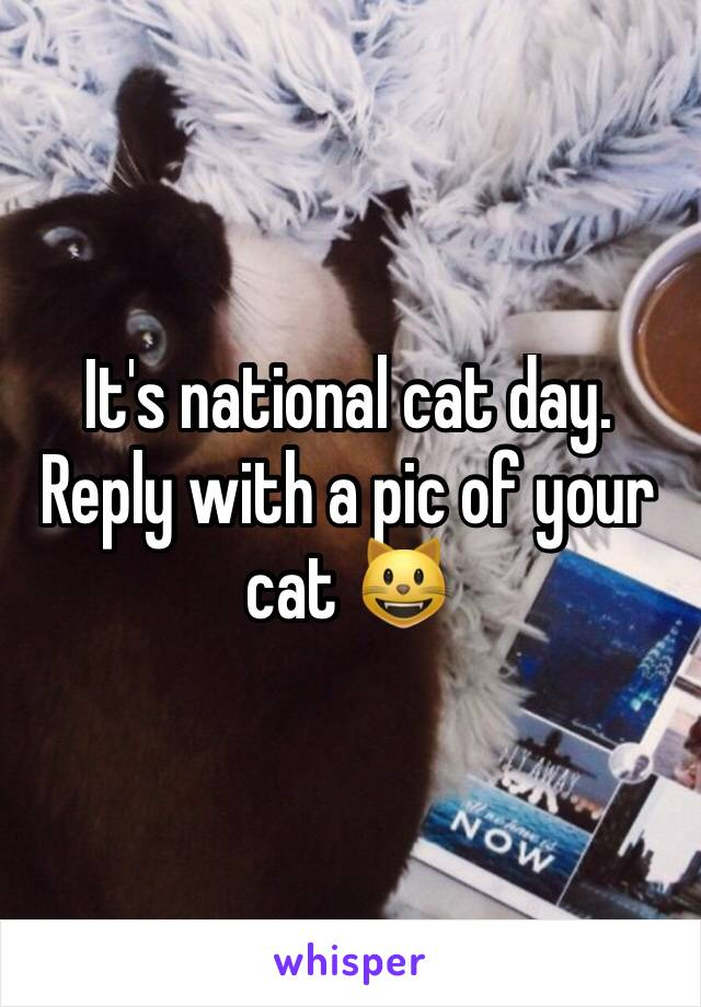 It's national cat day. Reply with a pic of your cat 😺