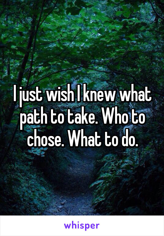 I just wish I knew what path to take. Who to chose. What to do.