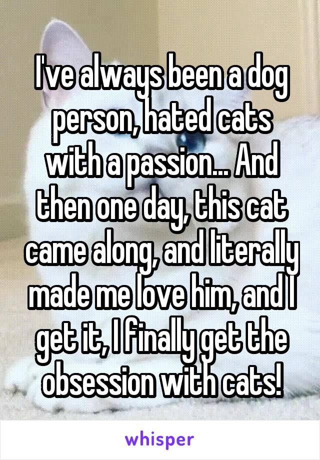 I've always been a dog person, hated cats with a passion... And then one day, this cat came along, and literally made me love him, and I get it, I finally get the obsession with cats!