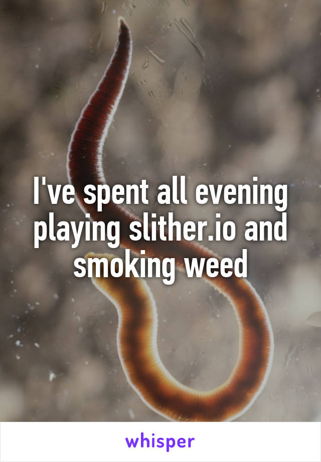 I've spent all evening playing slither.io and smoking weed