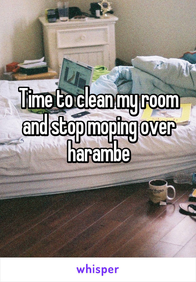 Time to clean my room and stop moping over harambe