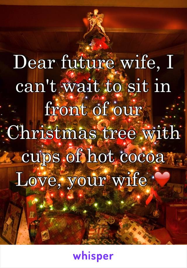 Dear future wife, I can't wait to sit in front of our Christmas tree with cups of hot cocoa  Love, your wife ❤️