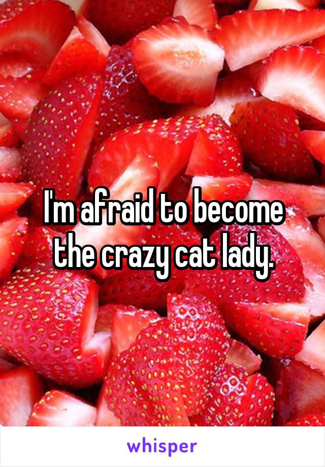 I'm afraid to become the crazy cat lady.