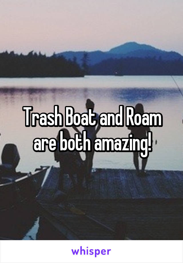 Trash Boat and Roam are both amazing!