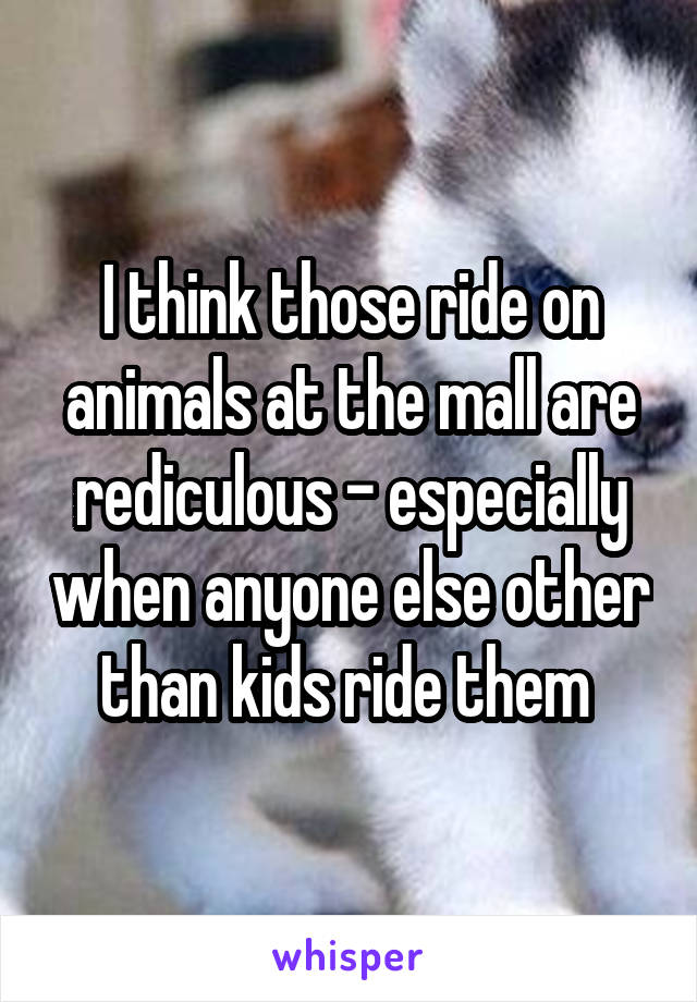 I think those ride on animals at the mall are rediculous - especially when anyone else other than kids ride them