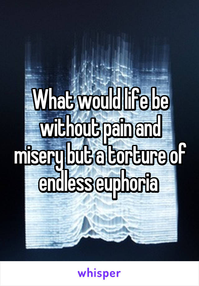 What would life be without pain and misery but a torture of endless euphoria