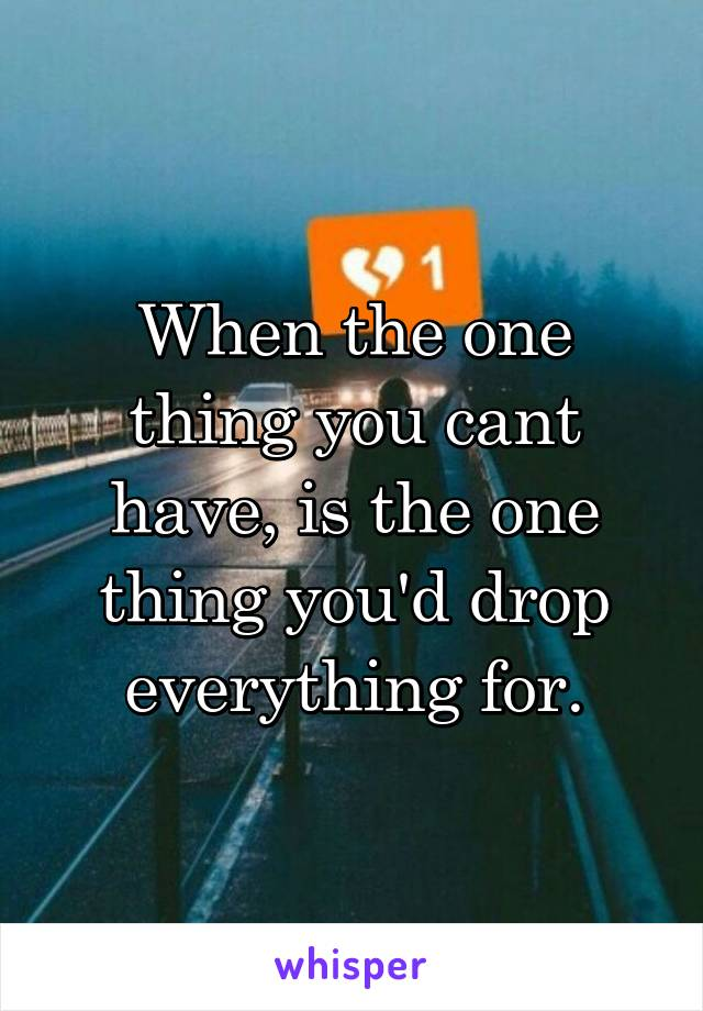 When the one thing you cant have, is the one thing you'd drop everything for.