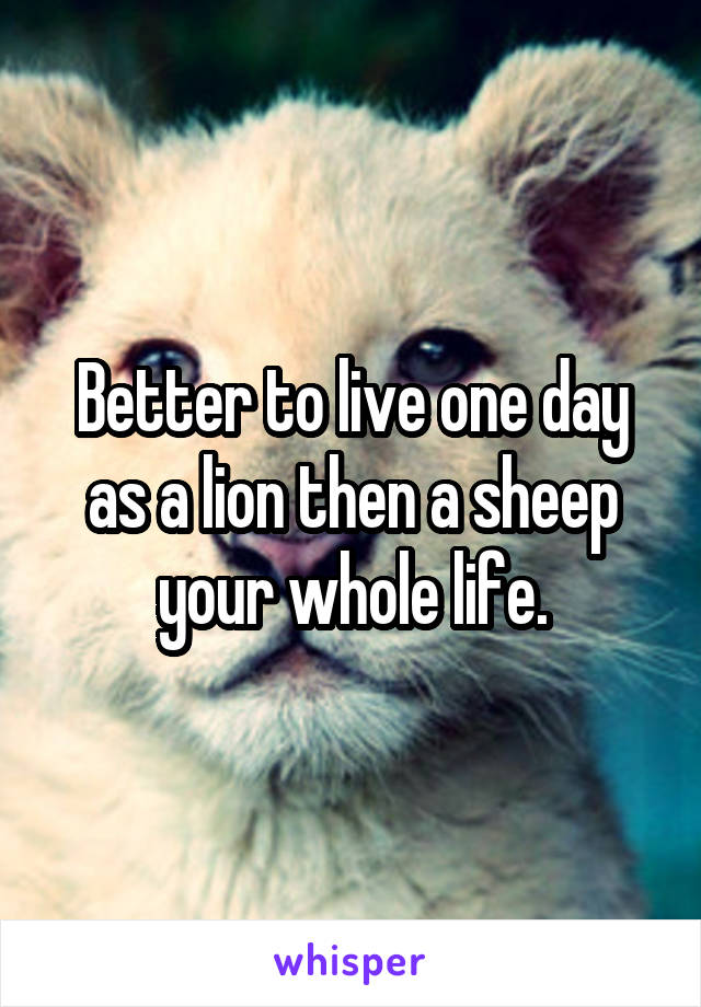 Better to live one day as a lion then a sheep your whole life.
