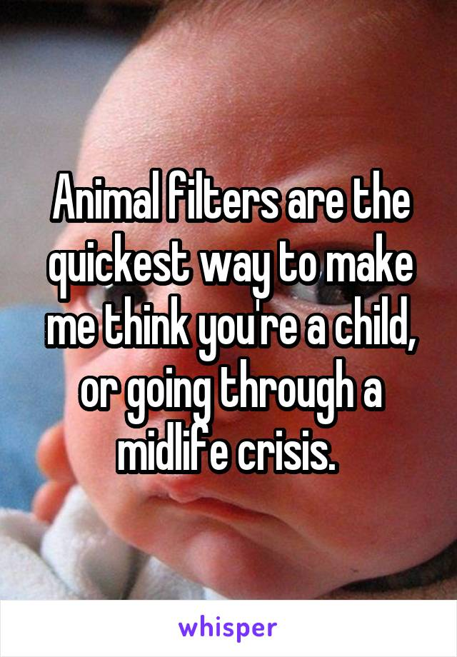 Animal filters are the quickest way to make me think you're a child, or going through a midlife crisis.