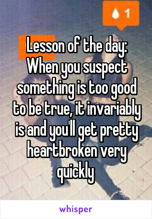 Lesson of the day: When you suspect something is too good to be true, it invariably is and you'll get pretty heartbroken very quickly