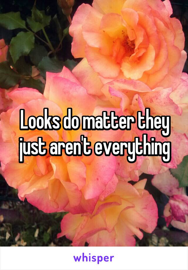 Looks do matter they just aren't everything