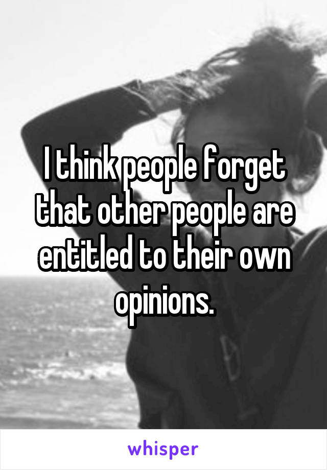 I think people forget that other people are entitled to their own opinions.