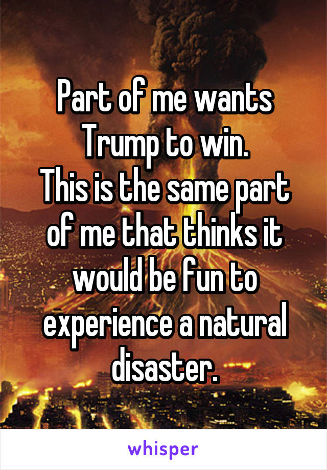 Part of me wants Trump to win. This is the same part of me that thinks it would be fun to experience a natural disaster.