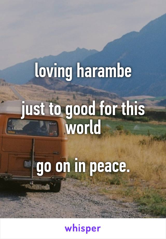loving harambe  just to good for this world  go on in peace.