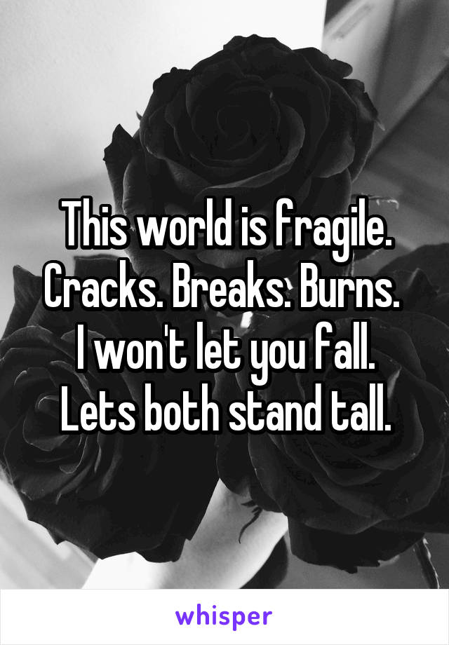 This world is fragile. Cracks. Breaks. Burns.  I won't let you fall. Lets both stand tall.