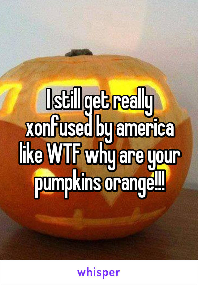 I still get really xonfused by america like WTF why are your pumpkins orange!!!