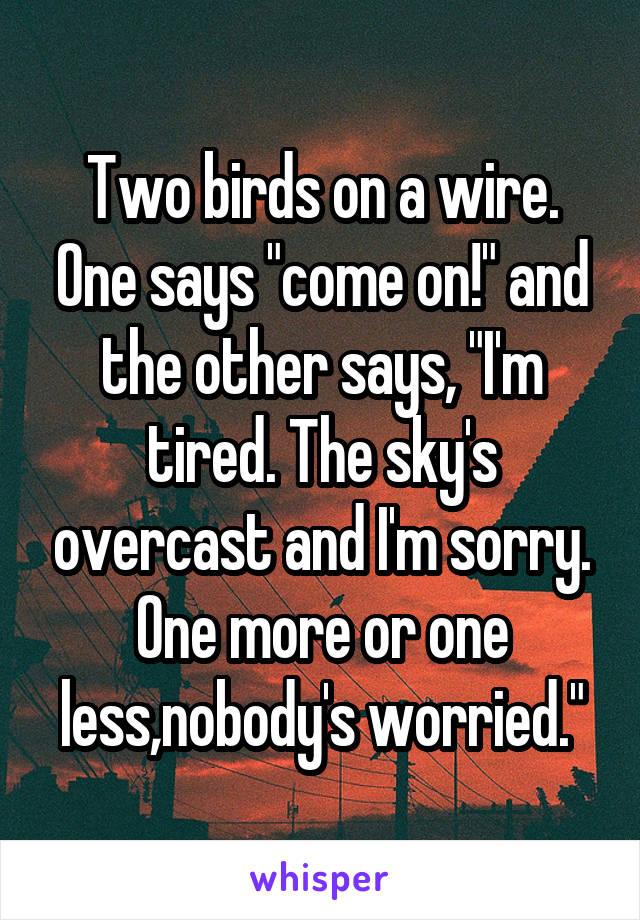 "Two birds on a wire. One says ""come on!"" and the other says, ""I'm tired. The sky's overcast and I'm sorry. One more or one less,nobody's worried."""
