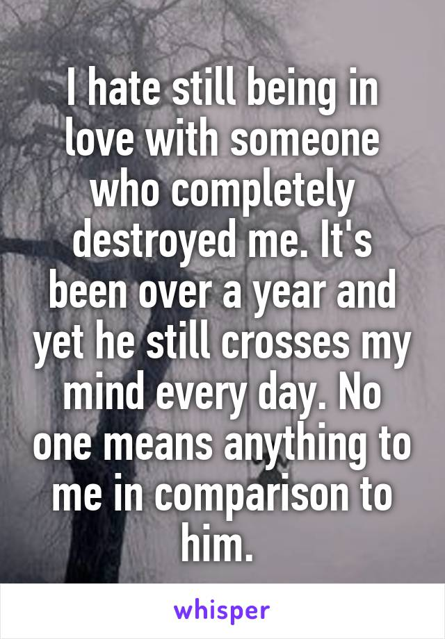 I hate still being in love with someone who completely destroyed me. It's been over a year and yet he still crosses my mind every day. No one means anything to me in comparison to him.