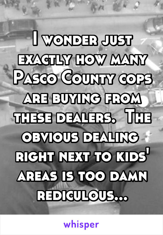 I wonder just exactly how many Pasco County cops are buying from these dealers.  The obvious dealing  right next to kids' areas is too damn rediculous...