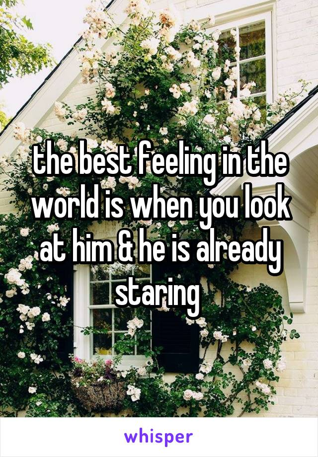 the best feeling in the world is when you look at him & he is already staring