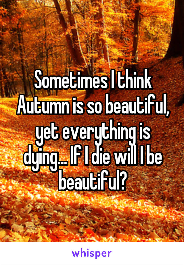 Sometimes I think Autumn is so beautiful, yet everything is dying... If I die will I be beautiful?