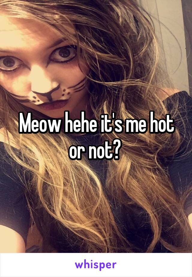 Meow hehe it's me hot or not?