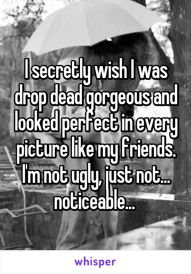 I secretly wish I was drop dead gorgeous and looked perfect in every picture like my friends. I'm not ugly, just not... noticeable...