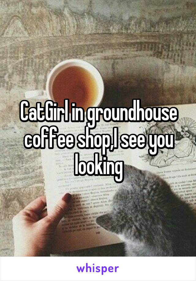 CatGirl in groundhouse coffee shop,I see you looking