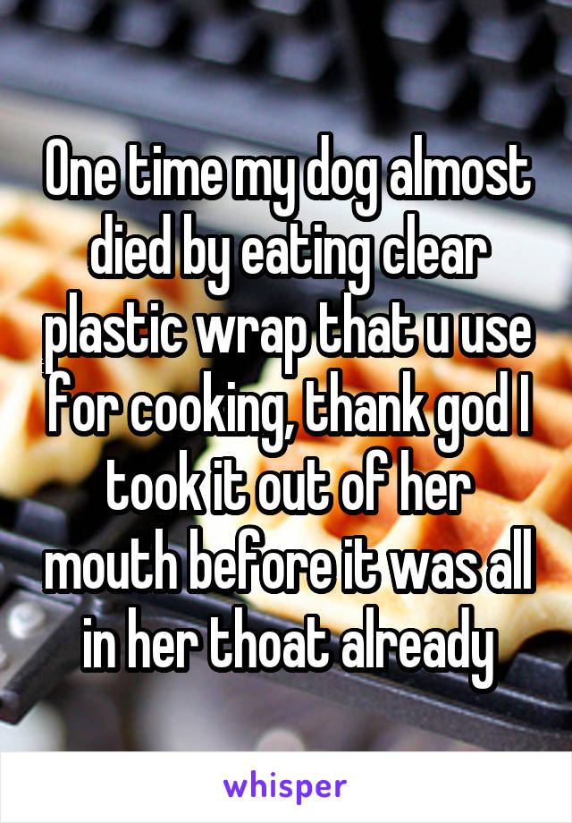 One time my dog almost died by eating clear plastic wrap that u use for cooking, thank god I took it out of her mouth before it was all in her thoat already