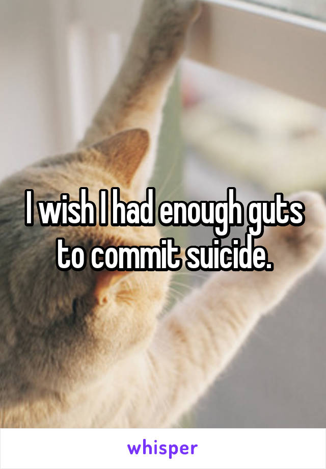 I wish I had enough guts to commit suicide.