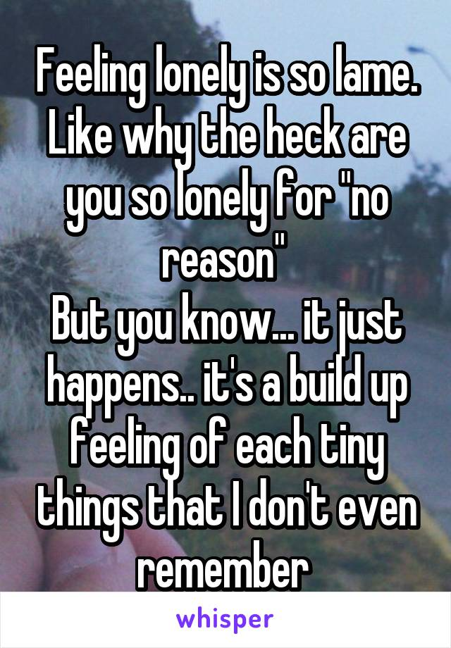 """Feeling lonely is so lame. Like why the heck are you so lonely for """"no reason""""  But you know... it just happens.. it's a build up feeling of each tiny things that I don't even remember"""