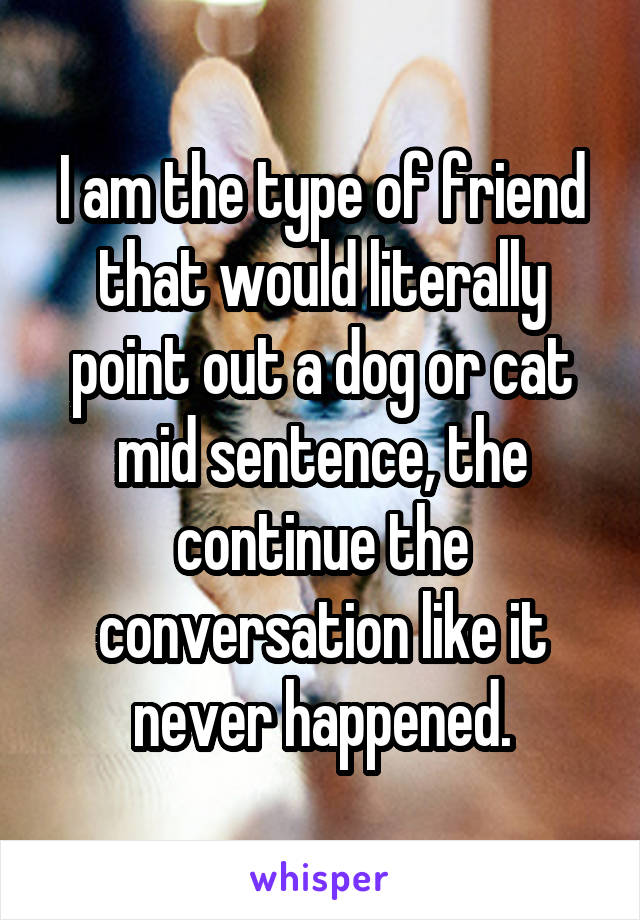 I am the type of friend that would literally point out a dog or cat mid sentence, the continue the conversation like it never happened.